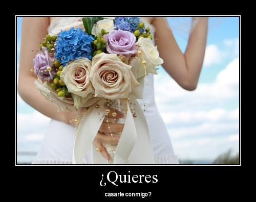 tumblr lqjijdD6Zp1qbzsaoo1 500 large1 Imágenes para pedir matrimonio