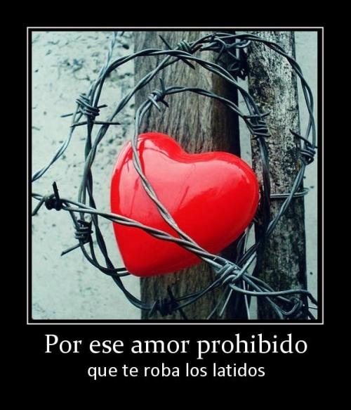 67219 por ese amor prohibido El amor prohibido