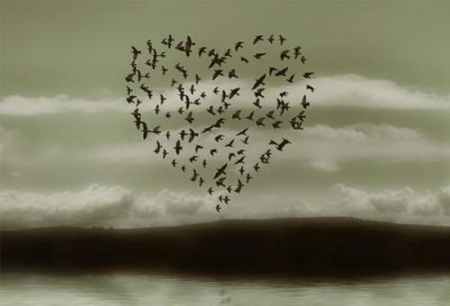 El amor es suficiente