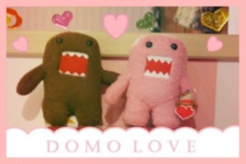 Domos enamorados