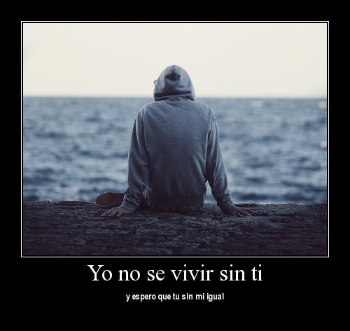 No se vivir sin ti