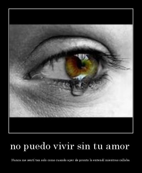 No puedo vivir sin tu amor