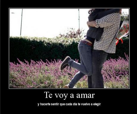 Te voy a amar