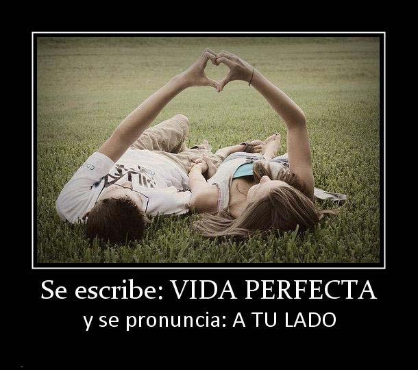 137522_se-escribe-vida-perfecta