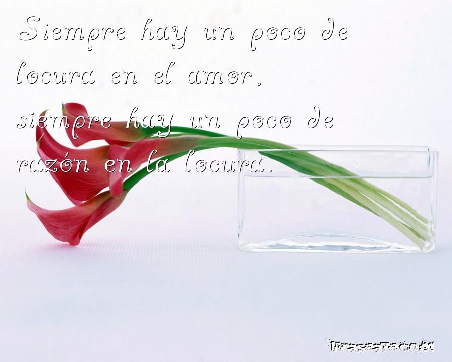 Siempre en el amor hay un poco de locura pero en la locura hay un poco de razón