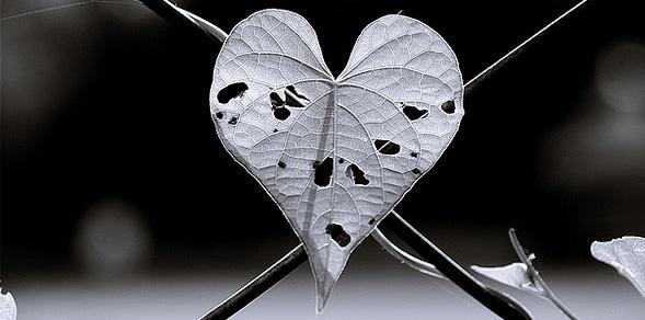 como-superar-una-decepcion-amorosa